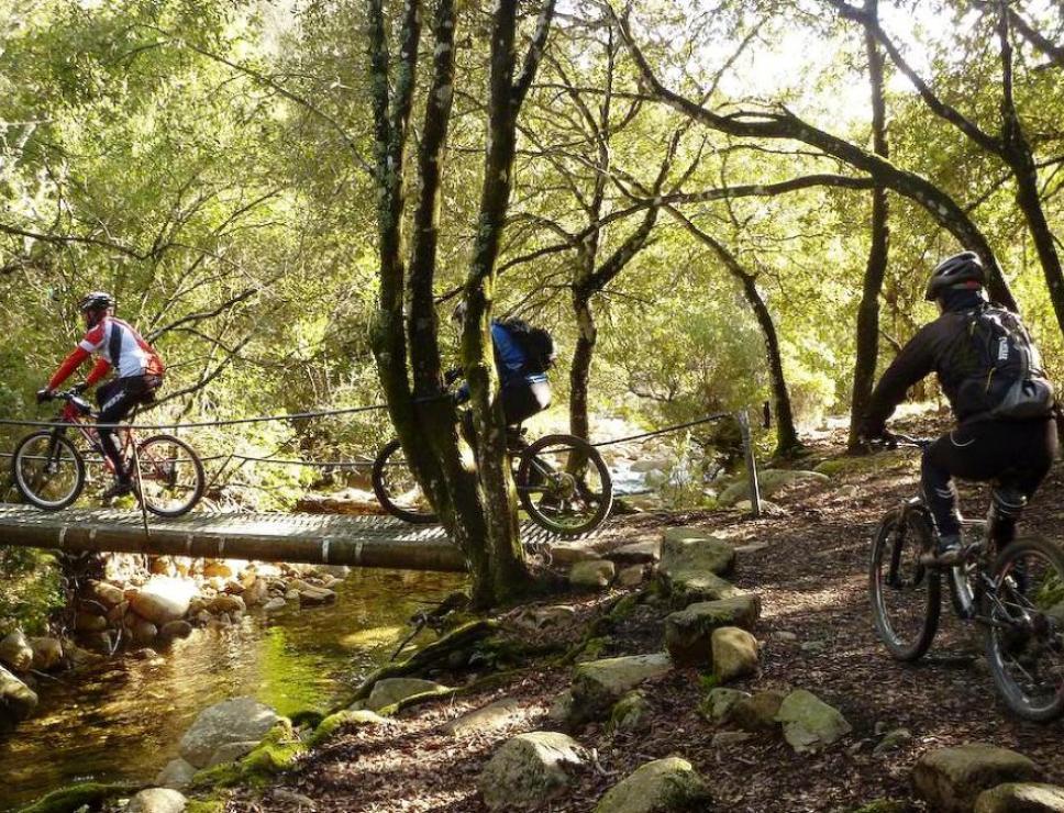 baddesalighes_mountainbike_mattiavacca