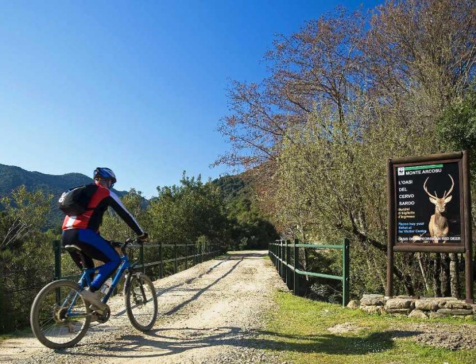biker a monte arcosu