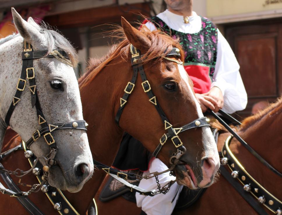 Cavalieri di Irgoli - Cavalcata sarda
