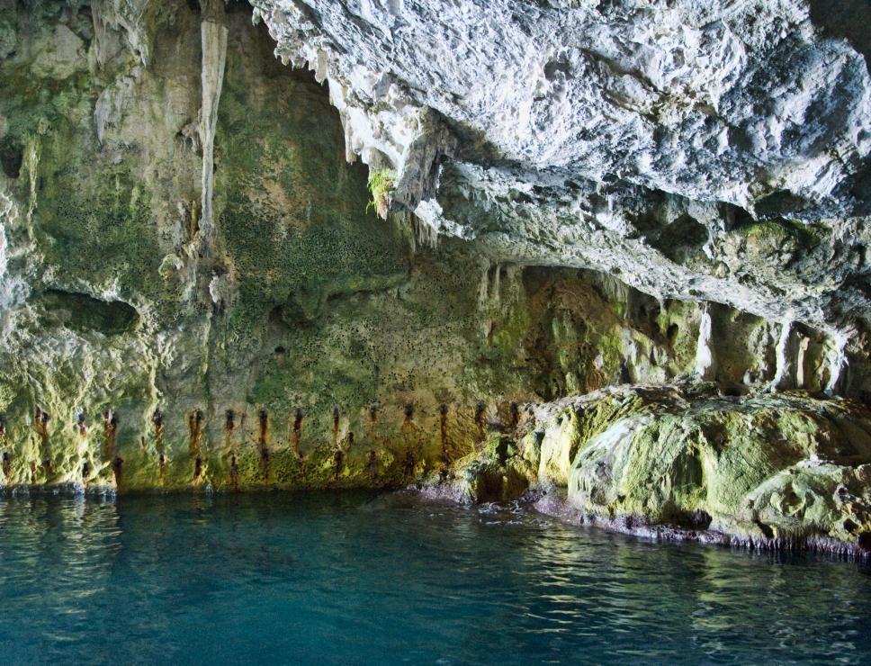 Grotta del Bue Marino - Cala Gonone