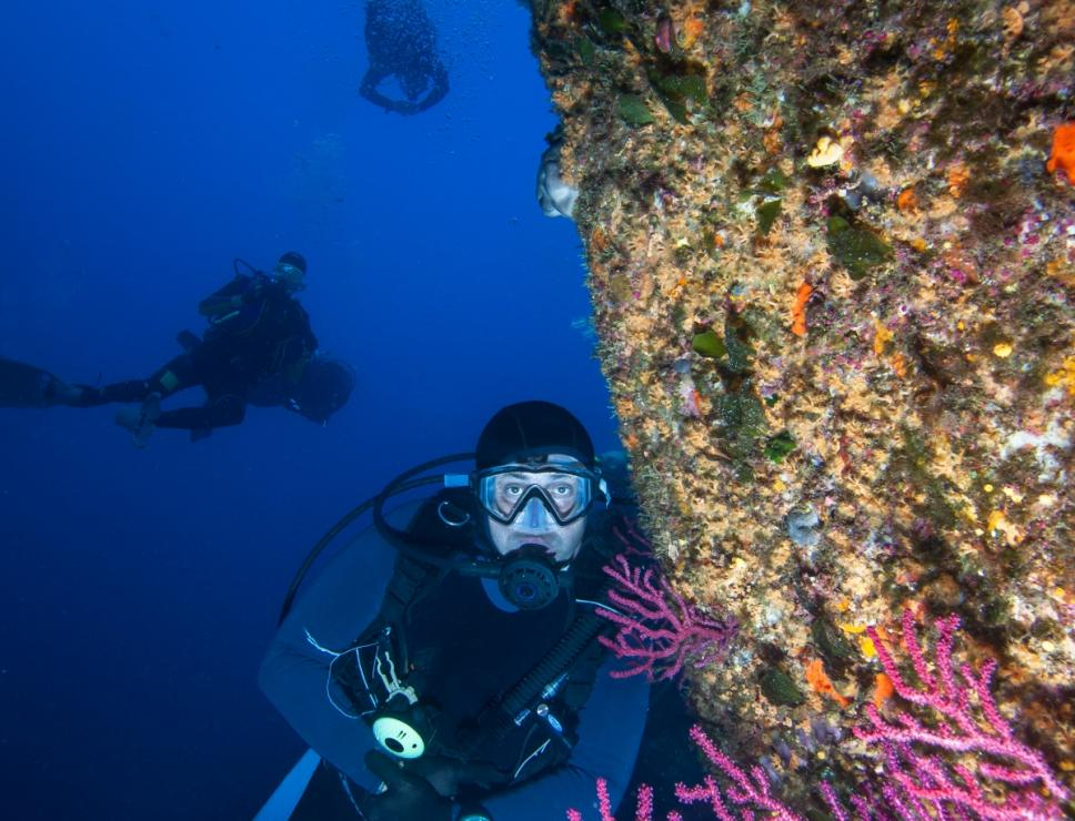 diving - immersione in parete