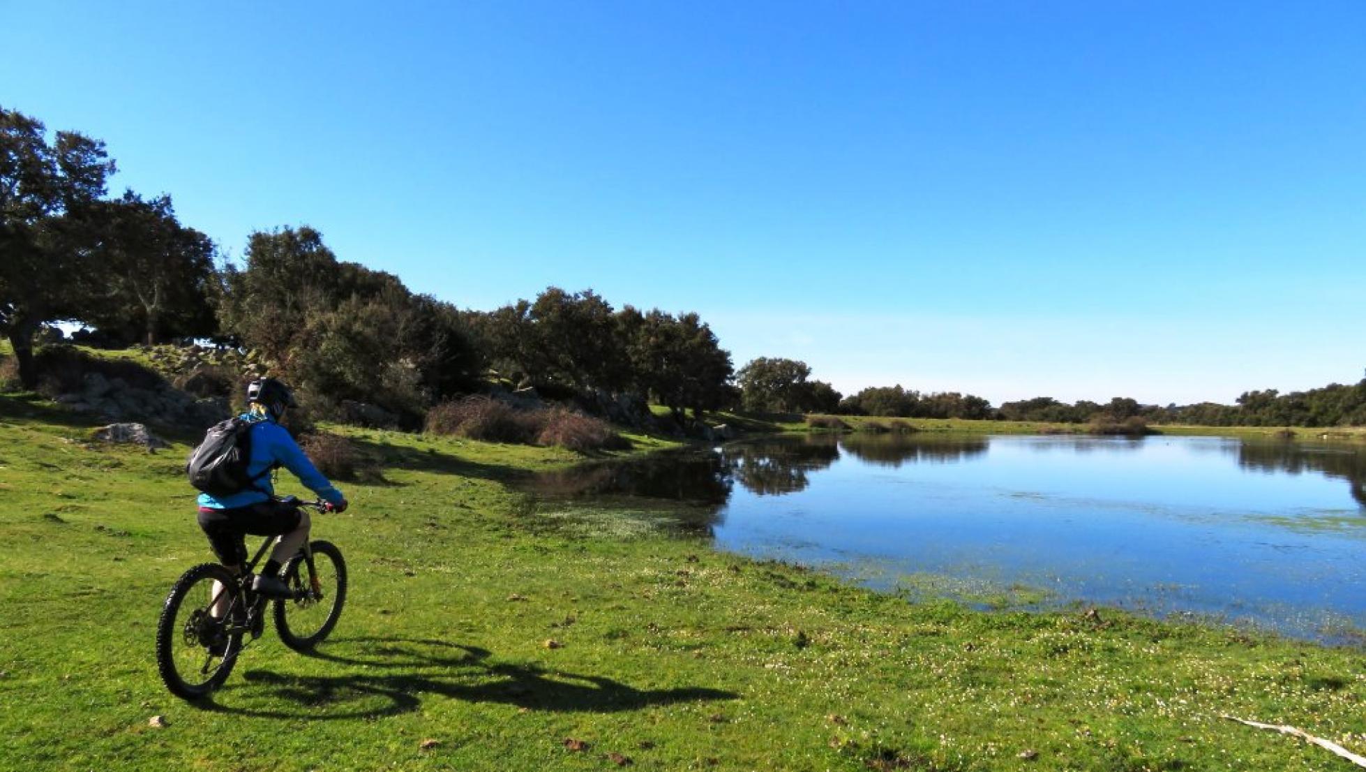 mountainbike_parco