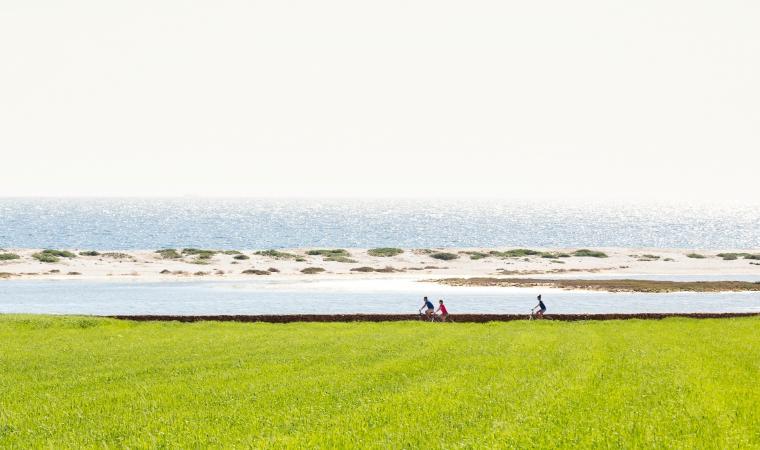 Bici tra stagno e spiaggia di Mari Ermi_Cabras