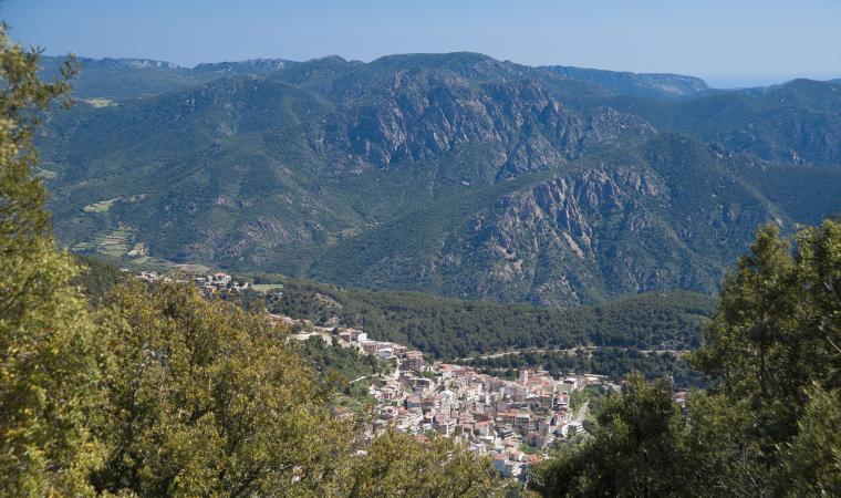 Veduta di Talana