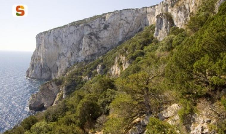Titel: Golfo Aranci (Olbia Tempio), Capo Figari Autor: Ruiu Domenico