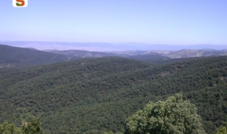 Titolo: Panorama del Goceano Autore: Sechi Caterina