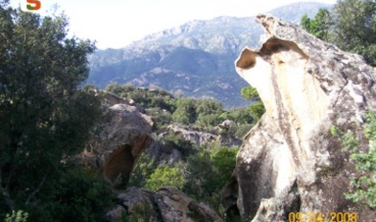 Talana, rocce monumentali Autore: Incollu Giampiero
