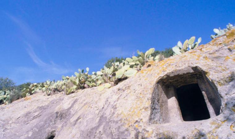 Oniferi, necropoli di Sas Concas