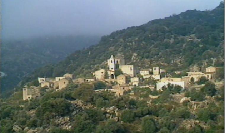 Lollove, Panorama