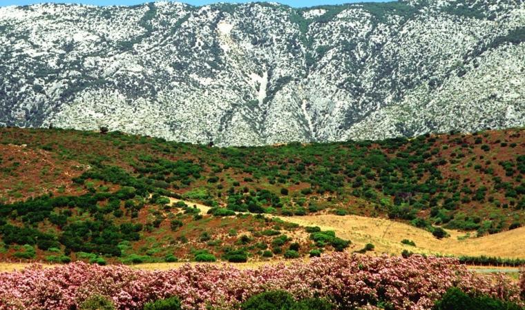 Vallata del Monte Albo - Lula