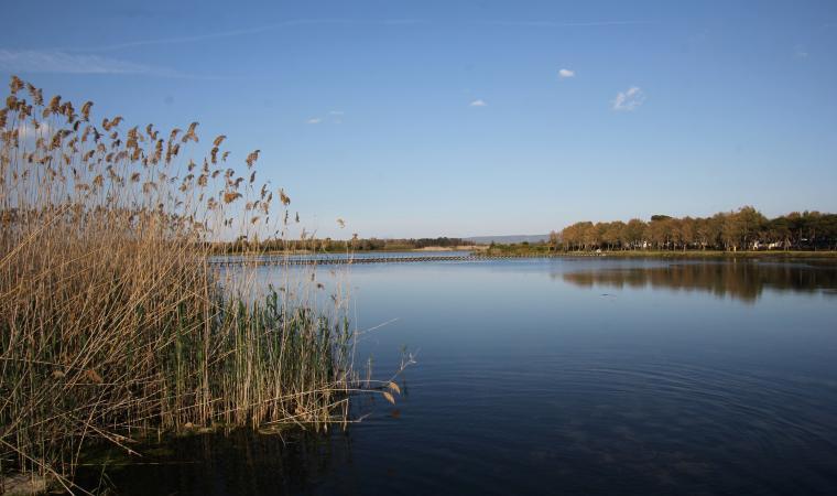 Laguna del Calich - Parco di Porto Conte Alghero