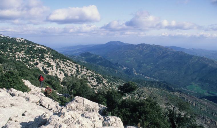 Monte Albo - Baronie