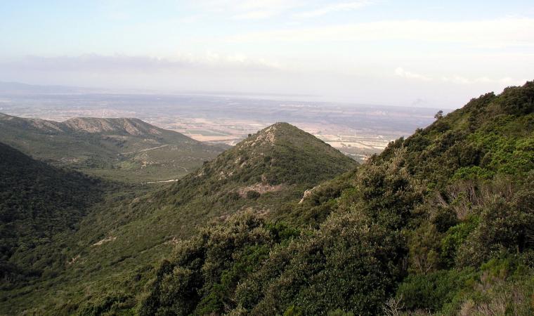 Parco Regionale Naturale del Monte Arci