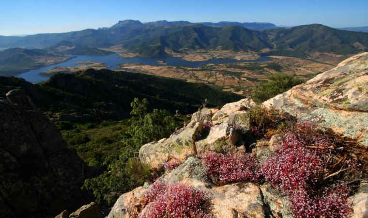 Torpè, veduta da Usinavà; Torpè, a panoramic view from Usinavà
