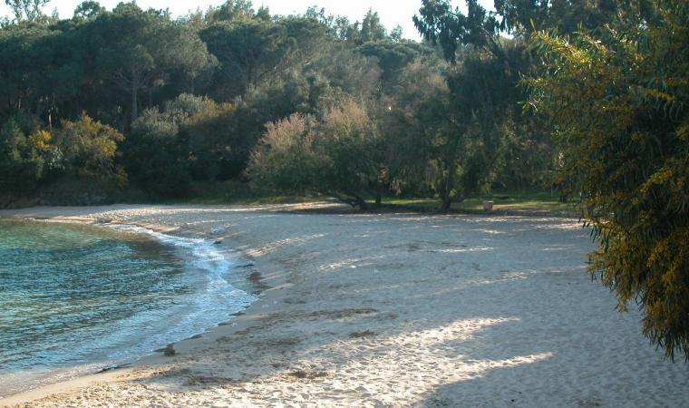 Palau, spiaggia di Cala Capra; The beach of Cala Capra