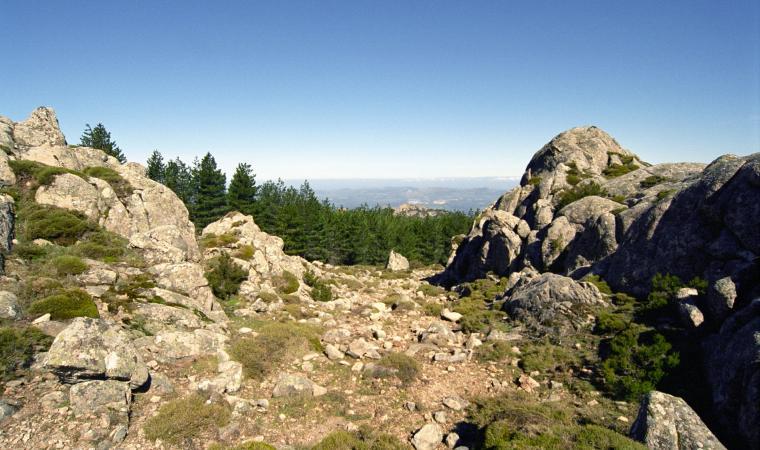 Monti del Limbara - Berchidda