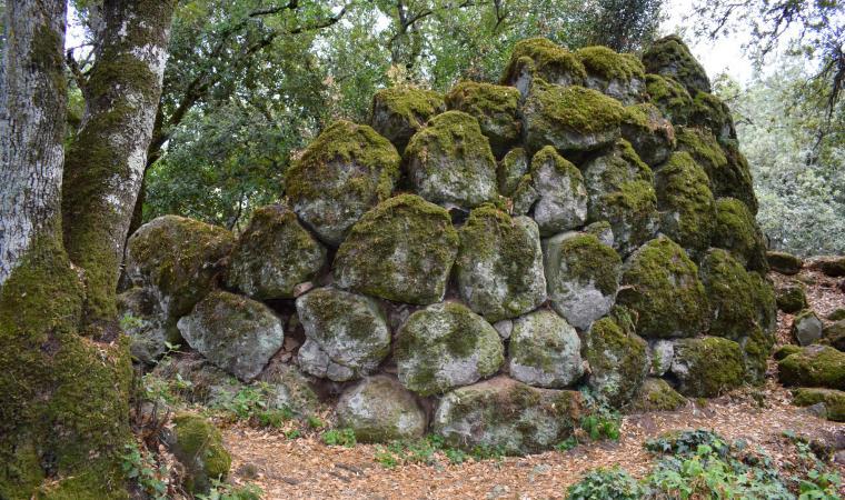 Nuraghe Sa costa - Foresta Burgos
