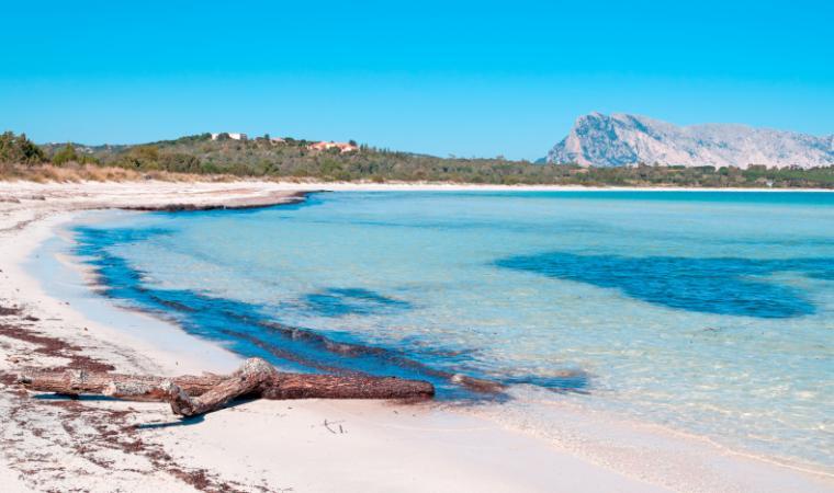 Spiaggia Brandinchi - San Teodoro