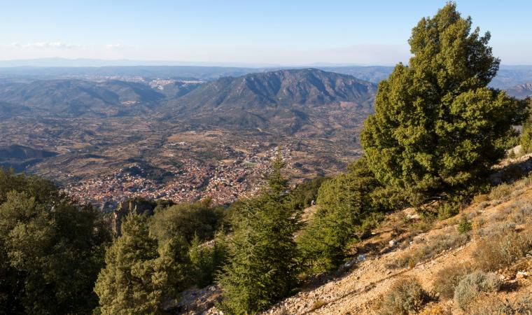 Veduta di Oliena