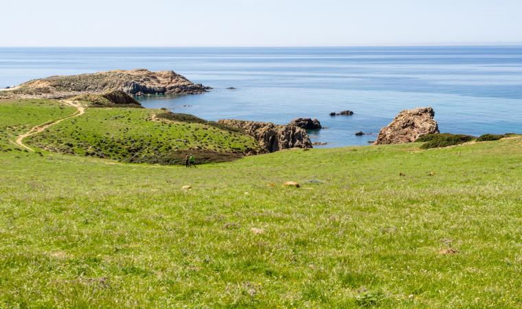 Capo Pecora - Costa Verde