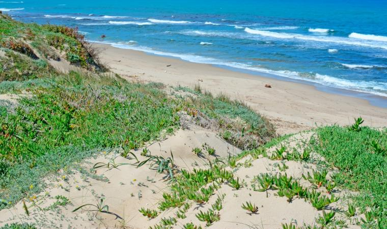 Spiaggia di Platamona - Sassari