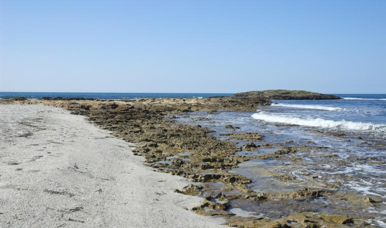 Spiaggia Is Arenas - Oristano