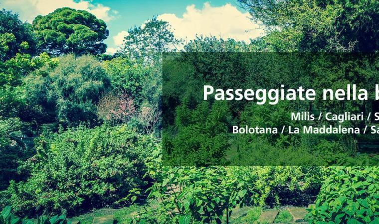 Giardini Storici di Sardegna (locandina)