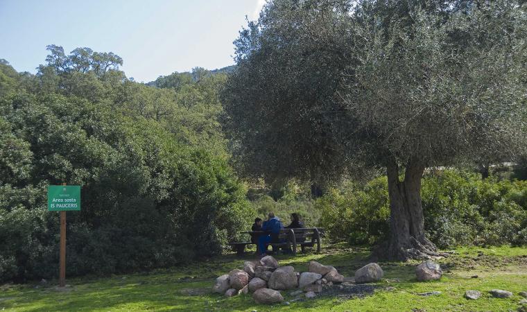 Gutturu Mannu, Parco Regionale - Assemini