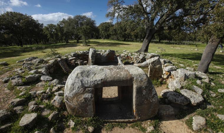 Pranu Muttedu, area archeologica - Goni