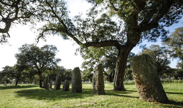 Area archeologica, Pranu Muttedu - Goni