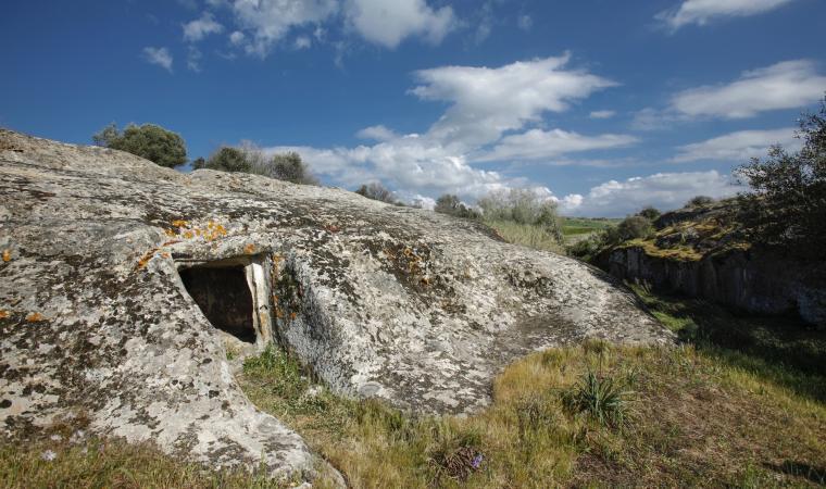 Necropoli is Concas - Guasila