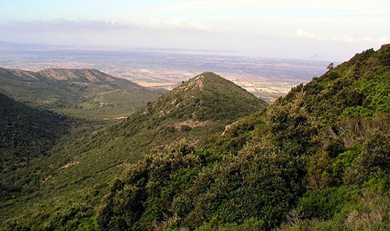 Parco del Monte Arci