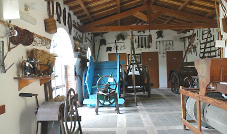 Interno museo - Fluminimaggiore