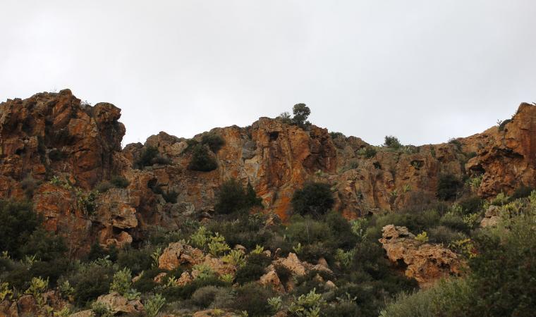 Monte Ruiu - Ittireddu