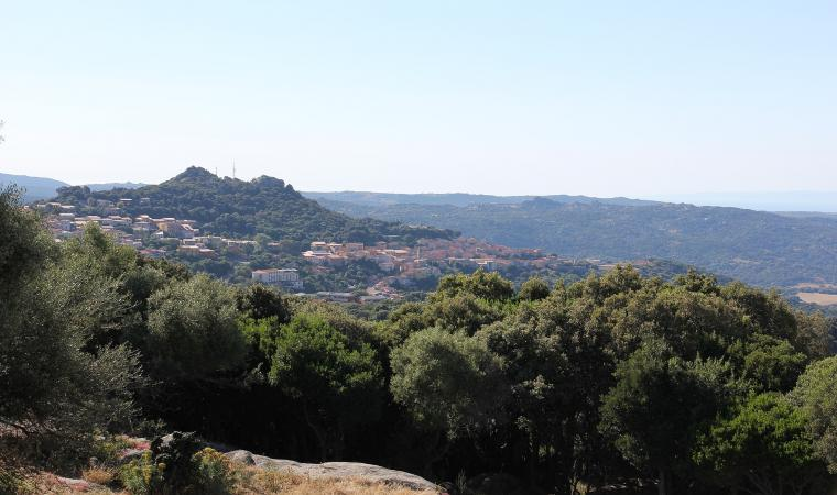 Panorama di Luogosanto