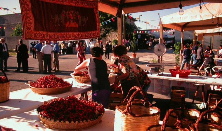 Sagra delle ciliegie - Bonnanaro