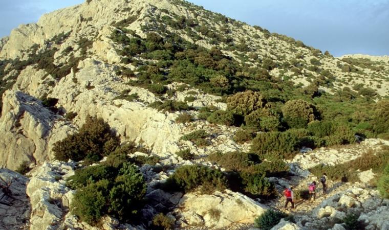 Monte Albo, punta  Caterina