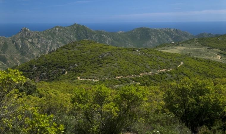 Monti Sette Fratelli - Maracalagonis
