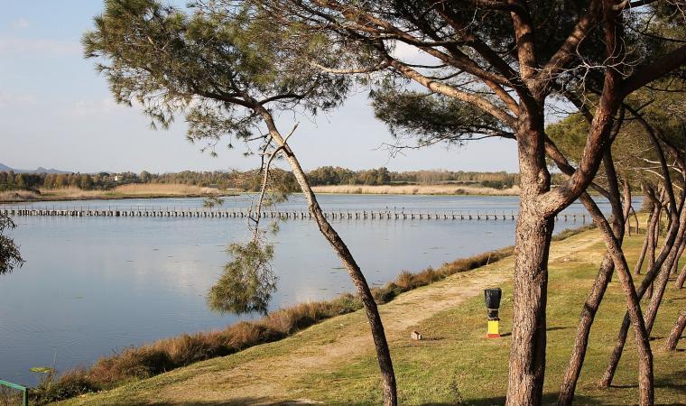 stagno di Calich - Parco di Porto Conte - Alghero