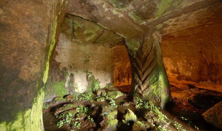 Ena de Cannuja, domus de janas - Bessude