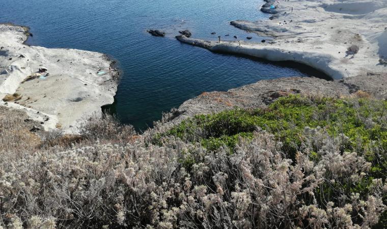 Cane Malu, piscina naturale - Bosa