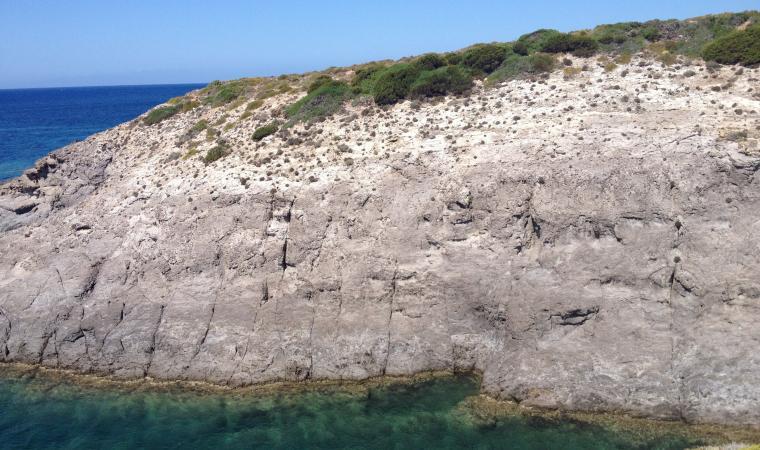 Cala Lunga, parete calcarea