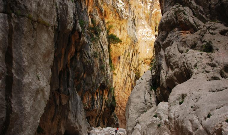 Gorropu - interno canyon