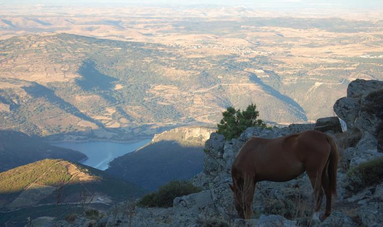 Lago Flumendoa da santa Vittoria - Esterzili