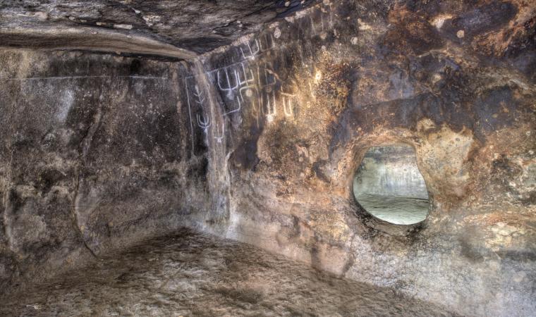Petroglifi - Oniferi