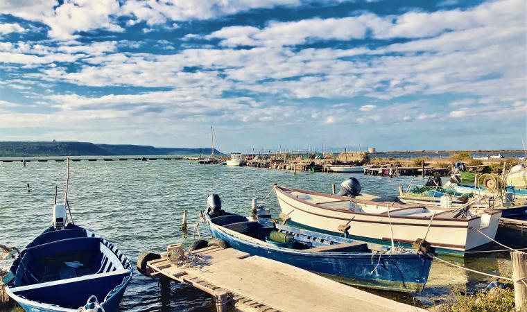 Laguna di Marceddì - Terralba