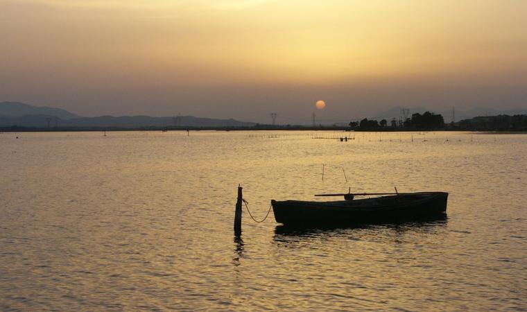 Laguna di santa Gilla - Elmas