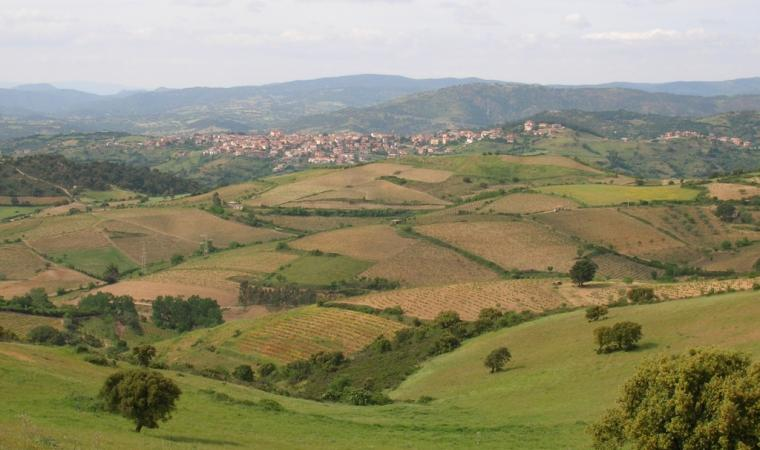 Paesaggio - Meana Sardo