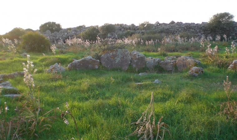 Muraglia megalitica di monte Baranta - Olmedo