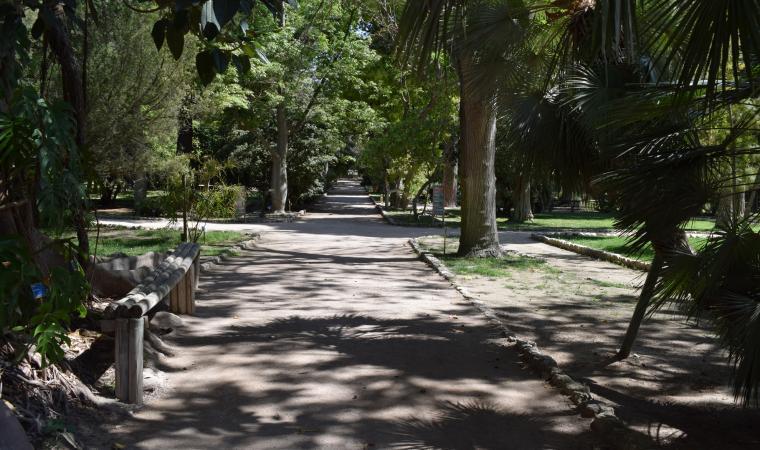 Orto Botanico - Cagliari